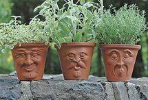 Gardens and garden ideas I love