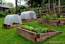Svažitá zahrada K