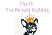 The Reina Bulldog / Nuestra Bulldog