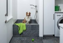 10 laundromats with dog shower, a dream for those who have dogs at home