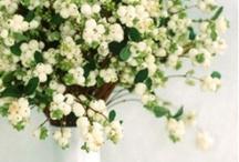Tèli esküvő