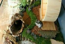 Hamster habitat ideeën