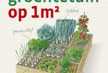 Tuin - Groentetuin