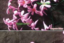 flores goma eva