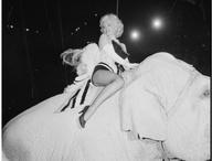 Marilyn / by Laura Minifie