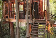 Tree House Escapes / by Colleen Marquez