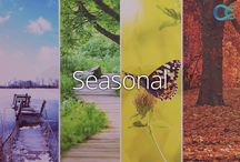 Seasonal / Learn more about the web's best #seasonal videos at Curiosity.com.