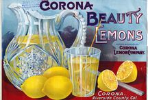 lemons / by Lisa Dong