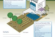 Claim your rainwater