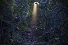 ✤❣Gateway to Heaven❣✤ / Magical Doorways....Enter Here ~~>