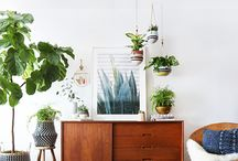 Interiors and Exteriors / bg ideas and inspo