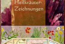 Gesundheit-Kräuter/Pflanzen ect.