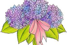 Flower clipart / by Annette Gibson