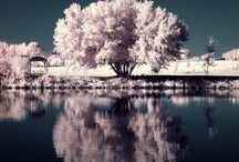 Photography - Landscape