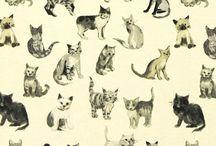 Gatitos / Me encantan...me considero una catlover...<3...