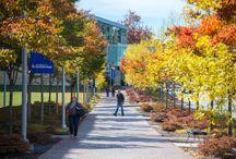 University of Southern Maine / Portland, Maine, USA