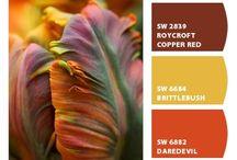 Värit / Värien harmoniaa ja yllättävyyttä. Sopusointua ja kontrastia.