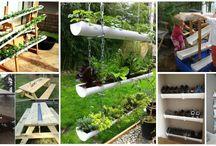 Garden ideas / New garden designs