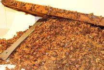 """RUCHE ✿ Matières premières / Découvrez ici les """"perles"""" de la #Ruche que nous utilisons dans nos produits ! #propolis #gelée #royale #miel #cire d'abeilles #pollen"""