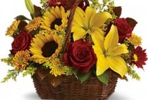 Autumn Flowers / Prevatte Florist in city West Palm Beach, FL has all the flowers for fall!