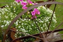 ogród ozdoby