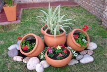 záhradka skalka