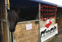 Westcountry Equine Fair 2018