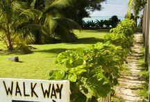 HOLIDAY  / Rarotonga