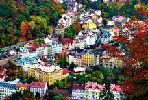 Karlovy 2013