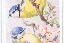 wintage bird