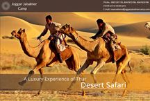 Camel Safari In joggan jaisalmer Camp / A ride on the ship of the desert is best way to enjoy the sunset. We offer a complete tour on camel back with escorted guide to show you the desert life the manganiyas and local birds and animals on the route.