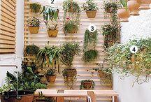 Varandas e plantas