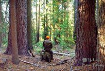 Hunting & Hiking