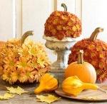 Fall / by Elizabeth Gable