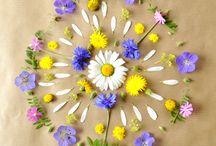 Mandala de flores ideias