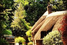 my Dorset