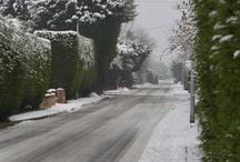My Winter pic's