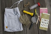 Field Tools / From field guides to collecting tins, here are some great items to have in your bag.
