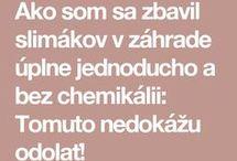 Slimaky
