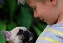 Frenchies and children / French Bulldog + Children = A great Love <3