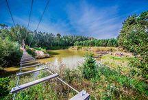 Park linowy / Fantastyczną zabawę na Ranchu Pod Bocianem zapewni również rozbudowany park linowy. Nasz park linowy to atrakcyjnie rozłożone nad piękną zieloną przestrzenią kładki, drabinki, platformy i tyrolki rozpięte ponad taflą wody to ciekawa i bezpieczna aktywność dostarczająca świetnych wrażeń.  Przed zabawą każdy Uczestnik przechodzi szkolenie z zakresu bezpiecznego użytkowania parku i posługiwania się sprzętem. Wszystko pod okiem specjalnie wyszkolonej kadry