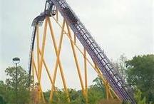 Roller coasters! / by Nicole Mingos