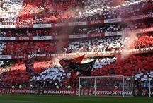 Benfica / Benfica - Aula de MKt