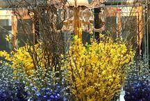 Flower arrangements for Hotels