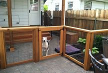 Pet-friendly Backyards / Fun and friendly fence, backyard, and landscaping just for pets.