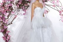 Wedding dresses / Gorgeous wedding dresses from all the famous designer in the world.