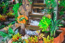 Splash: water gardens & features / Water gardens help the positive energy flow in your outdoor space.