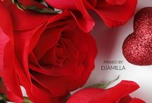 Valentine's Day Roses / The classic gift of a dozen red roses and long-stemmed roses never goes out of style.