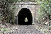 Lilyvale Tunnel