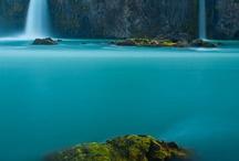 Incredible Nature